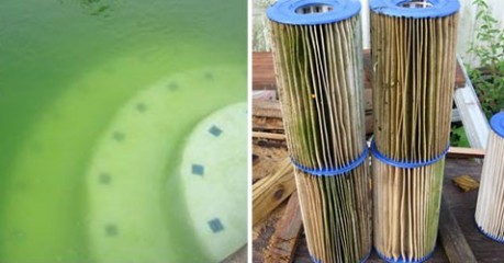 Cleaning your pool filter